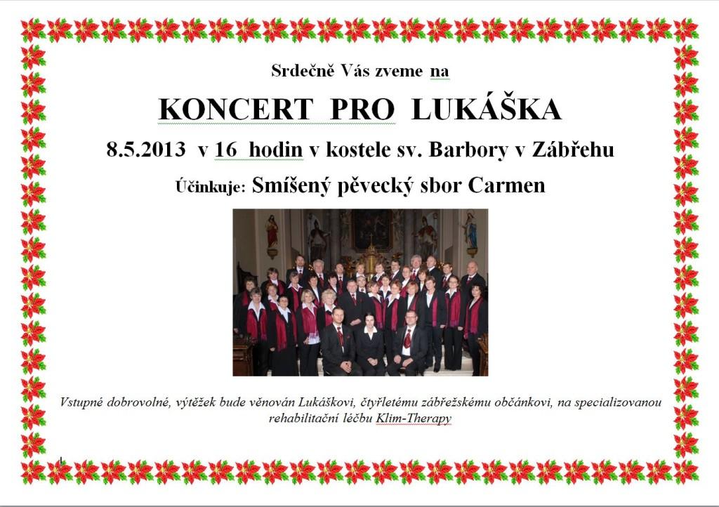 Koncert pro Lukáška